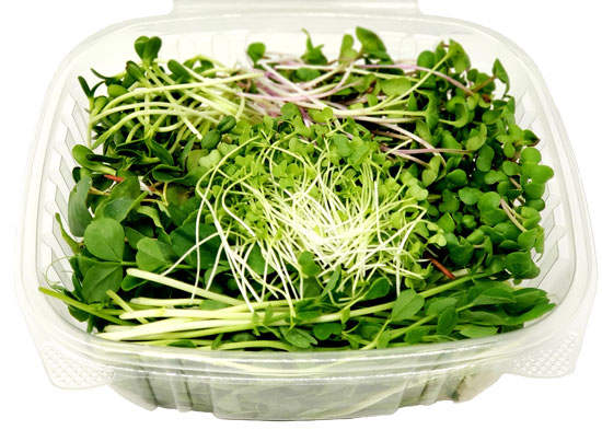 microgreen salad mix